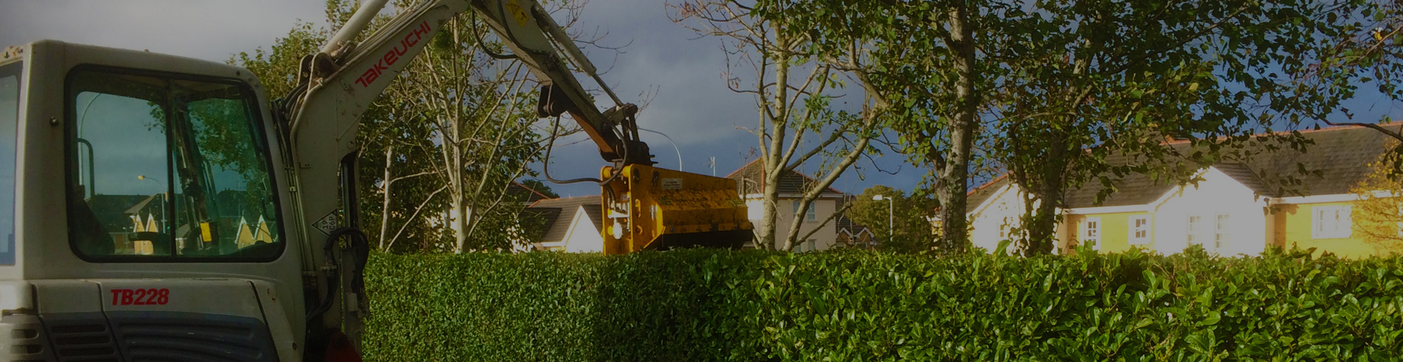HEDGE CUTTING MAINTENANCE SERVICES
